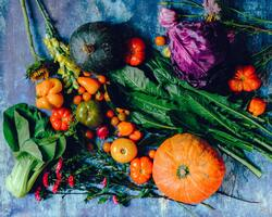 Image for Garden to Plate - Free Sustainable Living Workshop
