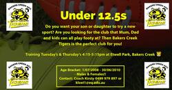 Image for Play with Friends and Play AFL this season at Bakers Creek AFC