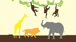 Image for Wild and wonderful jungle animals (under 5s) - Albany Creek Library