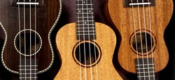 Image for Elton Inspired Ukulele Lessons @ Coffs Harbour Library