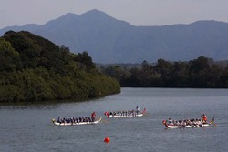 Image for Coffs Coast Dragon Boat Club Regatta