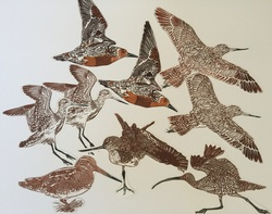 Image for Join our Wall of Wings! INVITATION TO LOCAL PRINTMAKERS