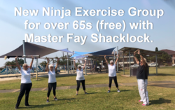 Image for Ninja Nannies Exercise Group for over 65's