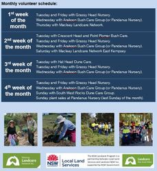 Image for Volunteer Landcare in the Macleay Valley