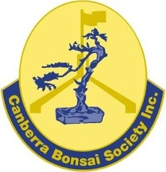 CANBERRA BONSAI SOCIETY INCORPORATED