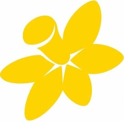 THE CANCER COUNCIL ACT