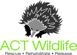 ACT Wildlife Incorporated