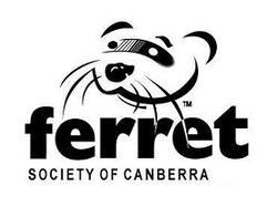 Ferret Society of Canberra