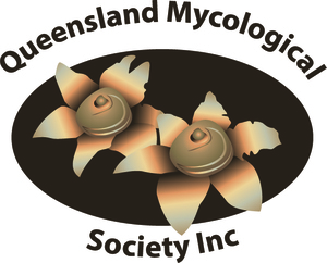 Queensland Mycological Society Inc