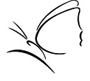 Toowoomba Hospice Association Incorporated Logo