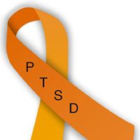 Picking Up The Peaces PTSD Education and Awareness Logo