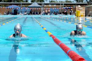 Swimming Association - Wimmera District 12 Logo