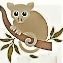Possum rescue and rehabilitation Inc - Wonnerup Logo