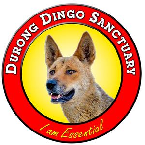 Durong Dingo Sanctuary  Logo