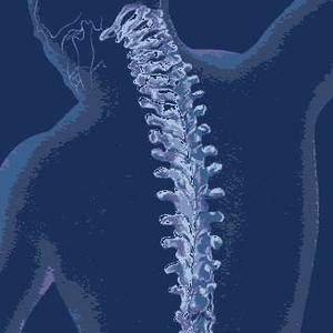 Aaron Chiropractic Logo